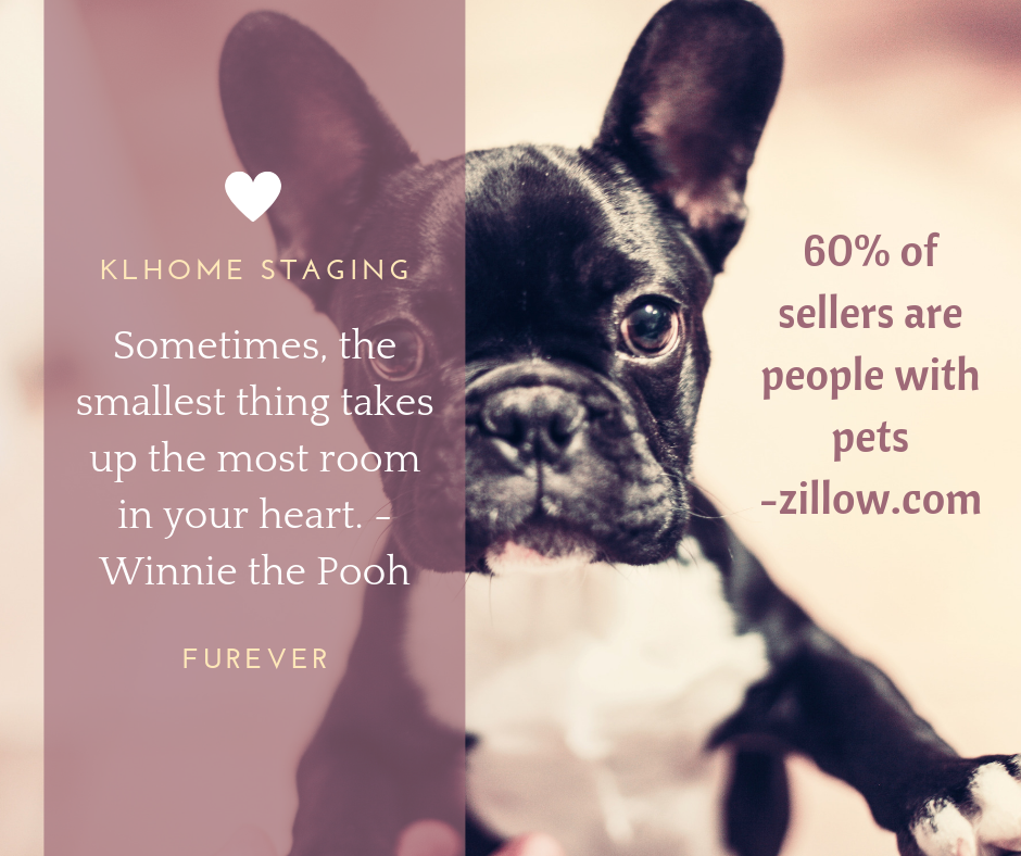 Zillow Rentals Apartments: 60% Of Home Sellers Are People With Pets According To
