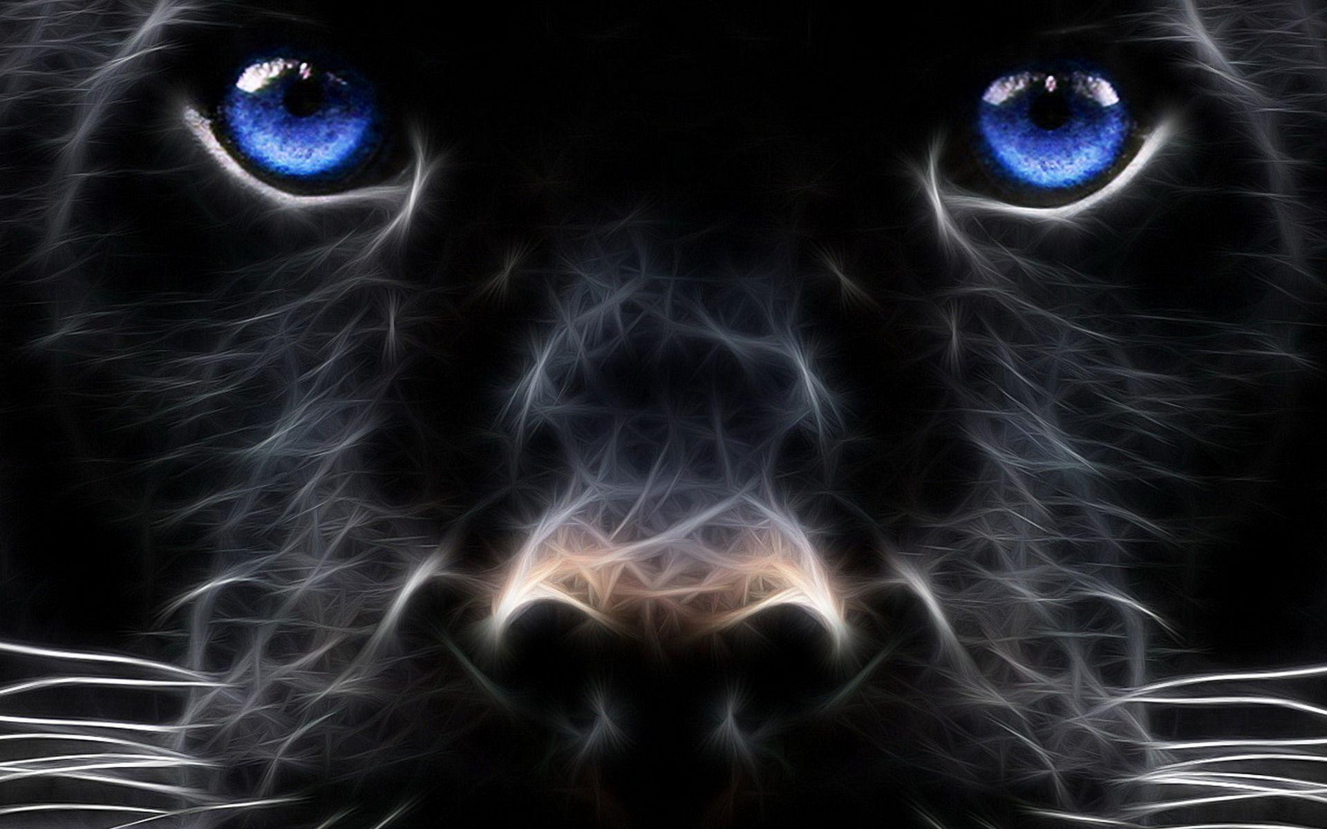Wallpapers Dieren Google Zoeken Panther Pictures Black