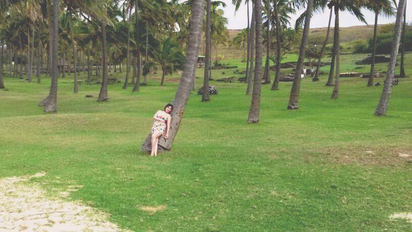 Playa Anakena,es una bellísima playa de arena blanca, palmeras y aguas Calipso, s junto con todo eso, en el paisaje de fondo se pueden admirar los Moais del Nau Nau,