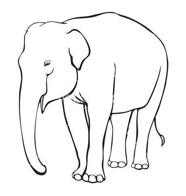 contour elephant vector art - download elephant vectors - 793315