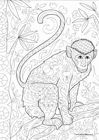 Monkey Doodle Colouring Page coloring-zoo Pinterest Monkey - copy coloring page of a tiger shark