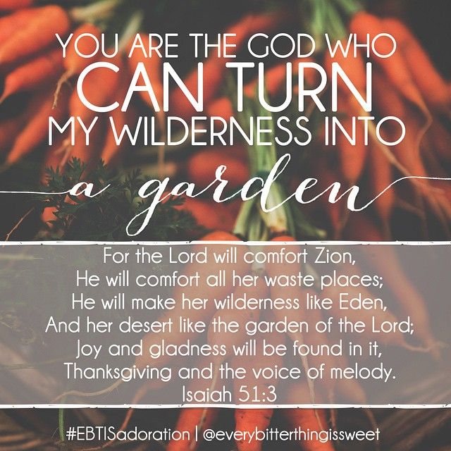 You are the God who can turn my wilderness into a garden.