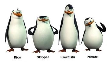 Pin Von Timur Nox Walker Auf Flow Pinguine Von Madagaskar Pinguine Zeichentrick