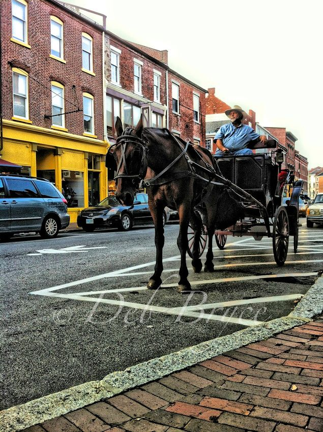 36b1cac81b7 Horse and buggy rides Market Square Portsmouth NH. I have ben here ...