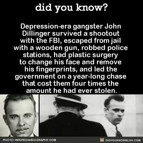 I Rob Banks for a Living Wall Quote JOHN DILLINGER What Do You Do