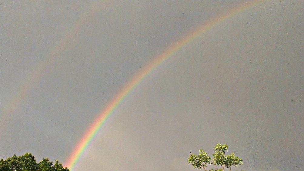 https://www.facebook.com/photo.php?fbid=527775040620657=a.225895940808570.59198.199978200067011=1 http://arienxrainbow.deviantart.com/art/Rainbow-2-375887894 http://weheartit.com/entry/63637078/in-set/6193713-arien-rainbow-s-photography
