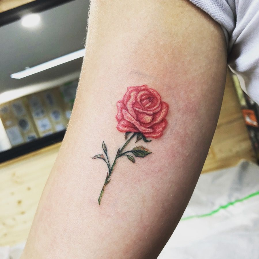 Tattoo Tatouage St Jerome Tatouage Rose Tattoo Red Rose Tattoo