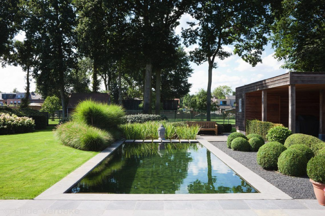 Cools zwemvijvers gardens swimming pools