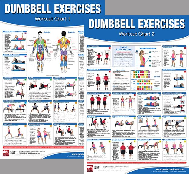 Dumbbell Chest Workouts For Men: CO-ED Chest Workout Professional Fitness Gym Wall Chart