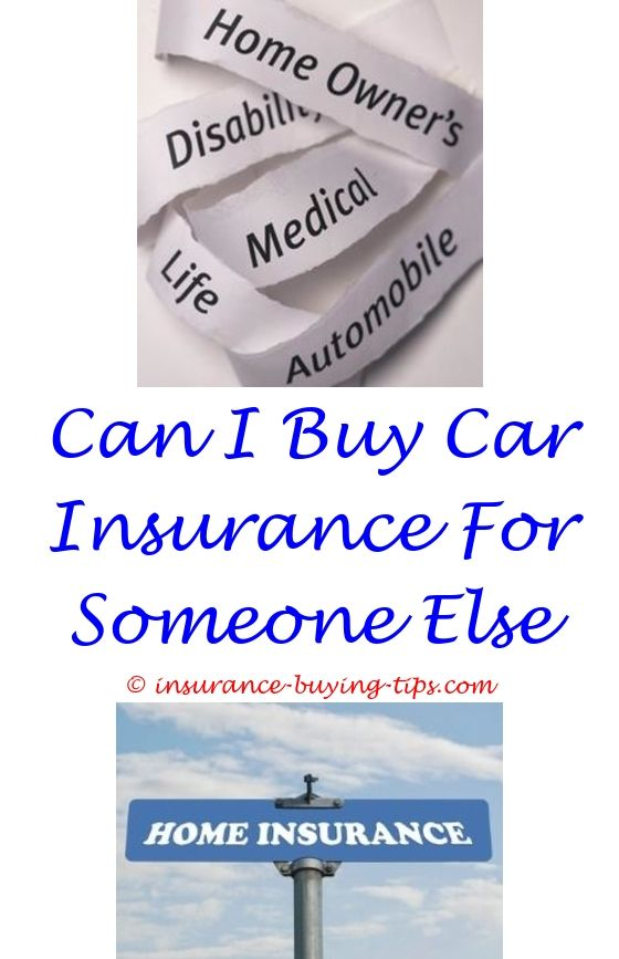Health Insurance Quotes Classy I Need Car Insurance Quotes  Buy Health Insurance Term Life