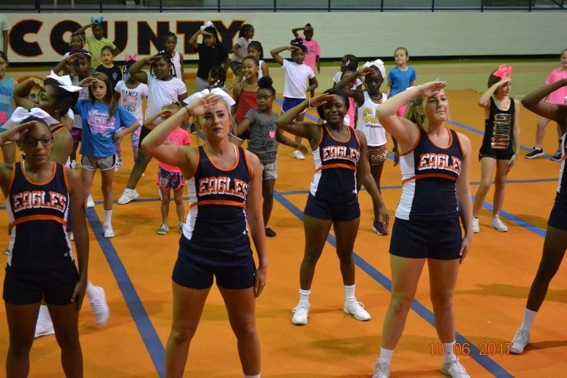 Pin by Sherry Dunn on WCHS Cheerleaders*Team