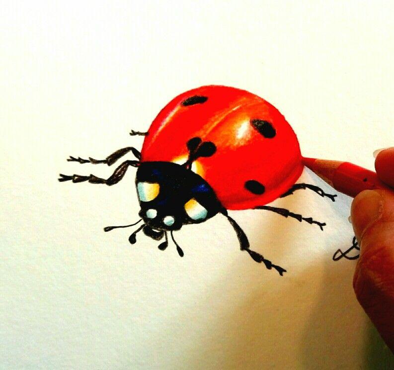 pin von deni zeichnet auf illustration illustrations
