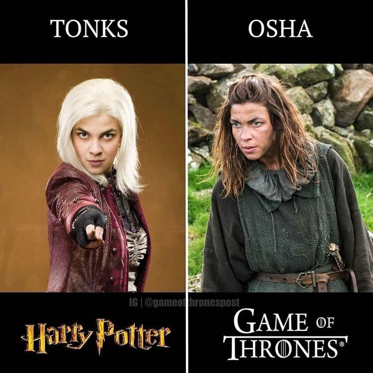 Actors In Both Harry Potter And Game Of Thrones Harry Potter Games Harry Potter Cosplay Harry Potter