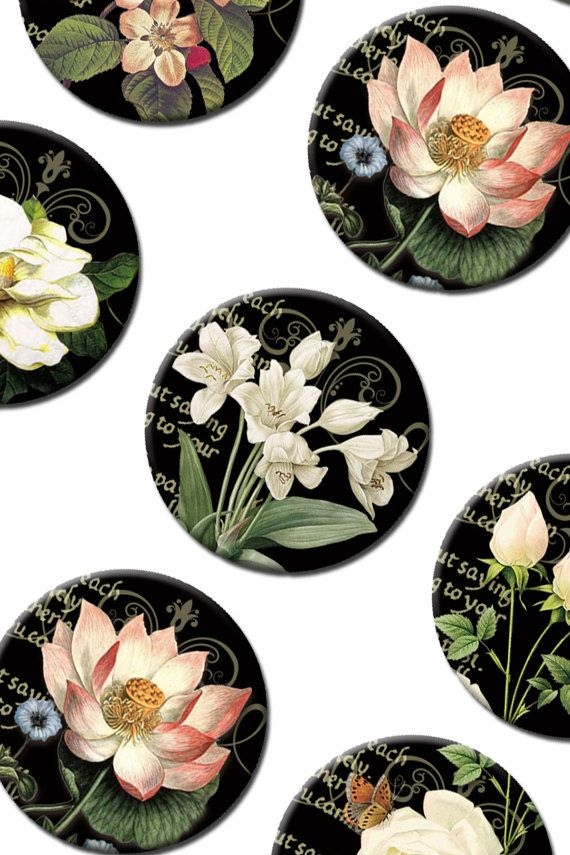 Digital Collage Sheet White Flowers 1 inch by Templates4Sellers, $2.50