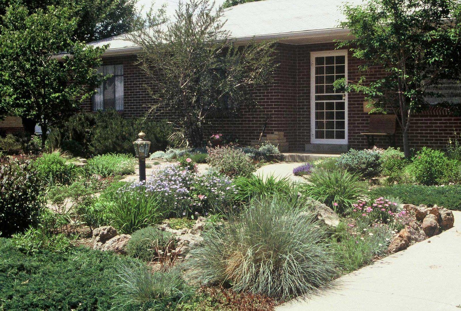 Elegant Alternative Zu Rasen Foto Von · The Art Garden: Garden Designers Roundtable: