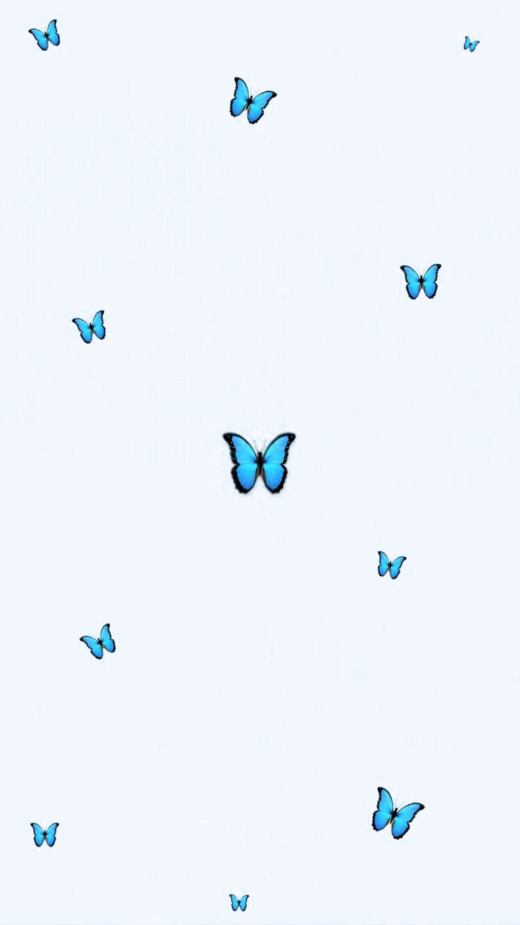 Aesthetic Butterfly Wallpaper Tumblr Babyblue Blue Minimalistic In 2020 Butterfly Wallpaper Iphone Cute Wallpapers Wallpaper Iphone Quotes
