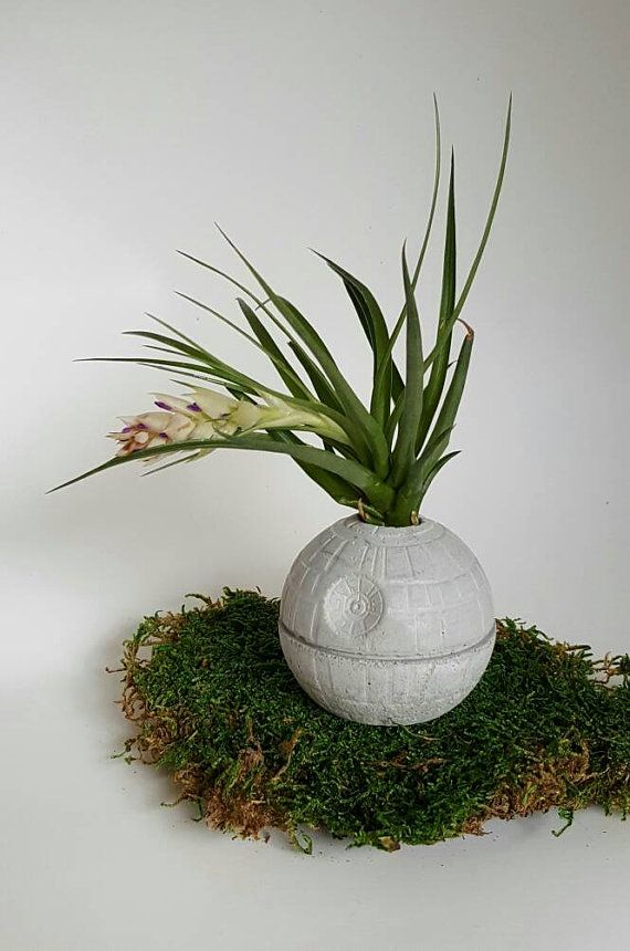 Death Star Concrete Planter-Air PLant Star Wars by MicroTerra
