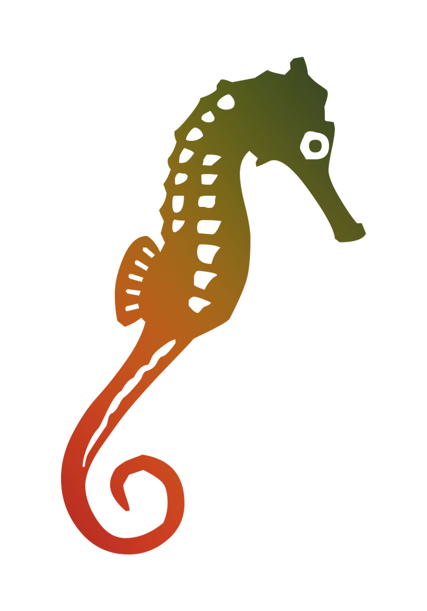 Seahorse Illustration Graphics Free Hq Image Seahorse Image Cartoon Drawings Clip Art