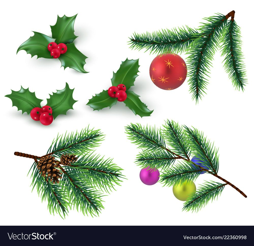 Christmas Decoration Realistic Fir Tree Branches Vector Image On Vectorstock In 2020 Christmas Decorations Christmas Branches Tree Branches