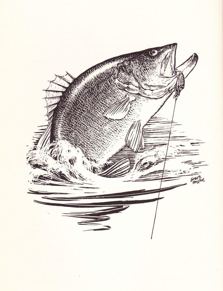 Black Bass Fishing: Robert Page Lincoln – Part 1   Bass Fishing ...
