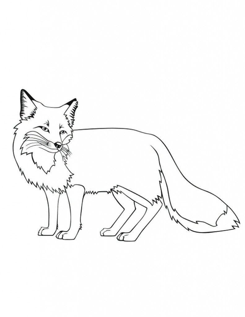 Free Printable Fox Coloring Pages For Kids Fox coloring
