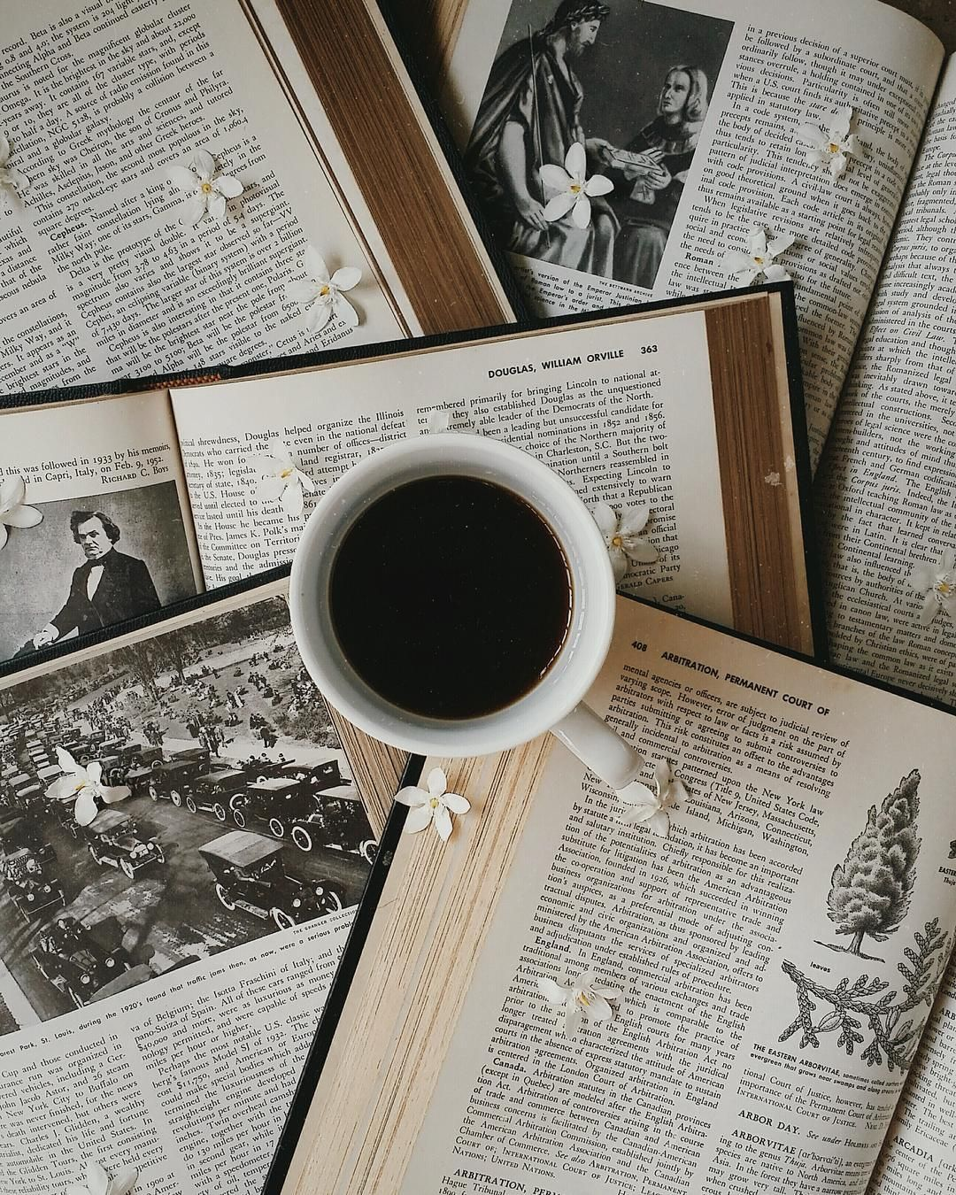 Brown Aesthetic Julianiden Coffee And Books Brown Aesthetic Bookstagram Inspiration