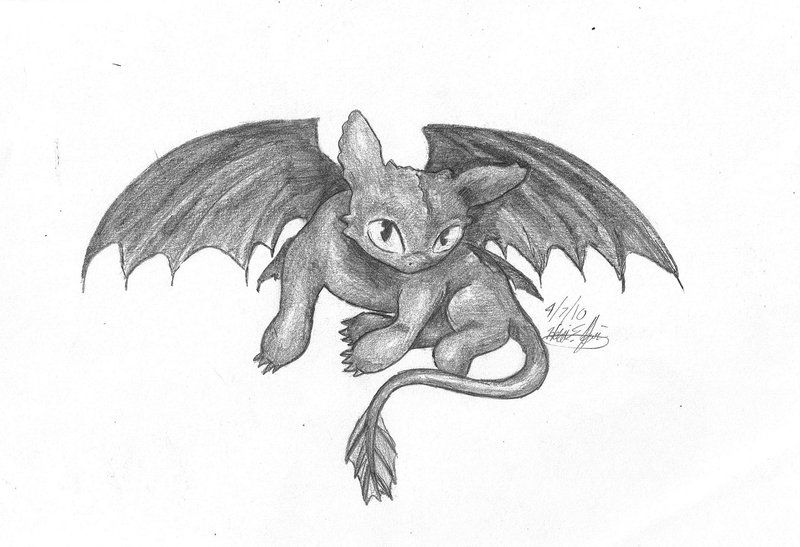 Pix For U003e Baby Toothless Drawing