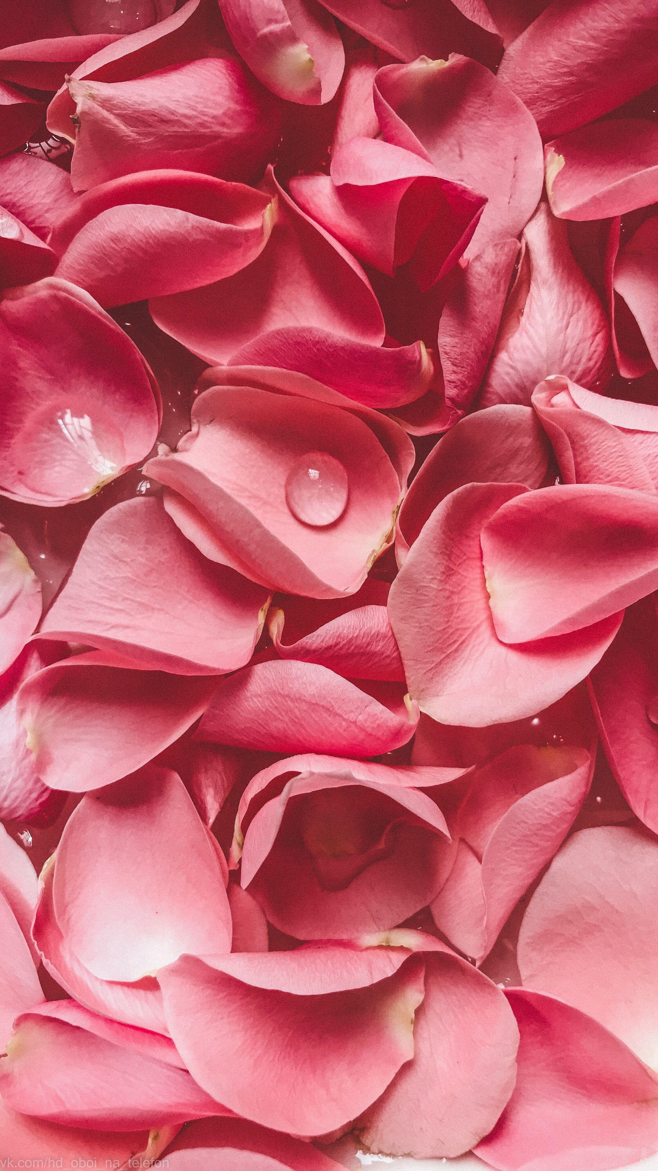 Скачать Розовые Обои
