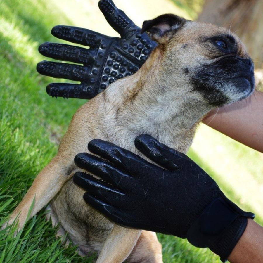 Pet Grooming Gloves Pet grooming, Pet accessories, Gloves