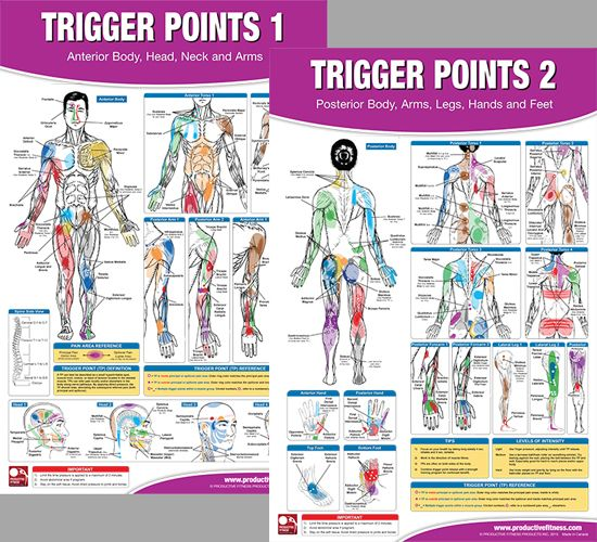 Trigger Points Massage Therapy Fitness Anatomy 2 Poster Wall Chart Set Pfp Trigger Points Trigger Point Massage Massage Therapy