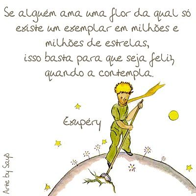 O Pequeno Príncipe Quote The Little Prince Frases E Prince