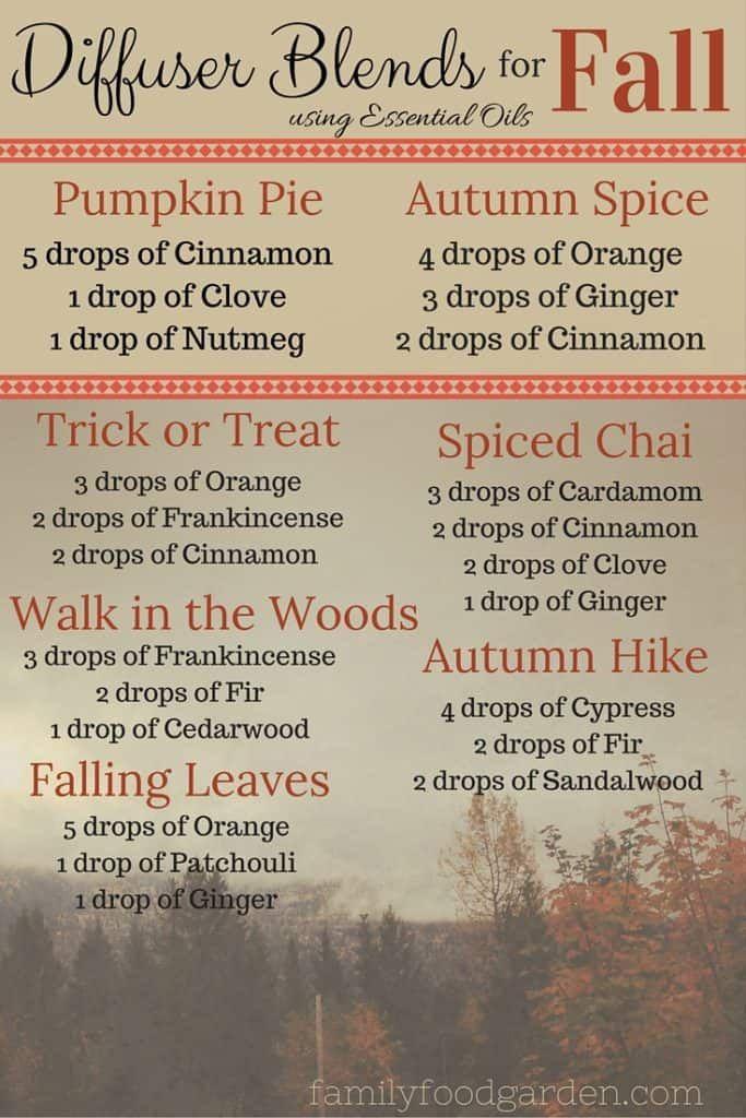 100+ Ideas for Fall Decor, Fall Drinks & Autumn Recipes #fall