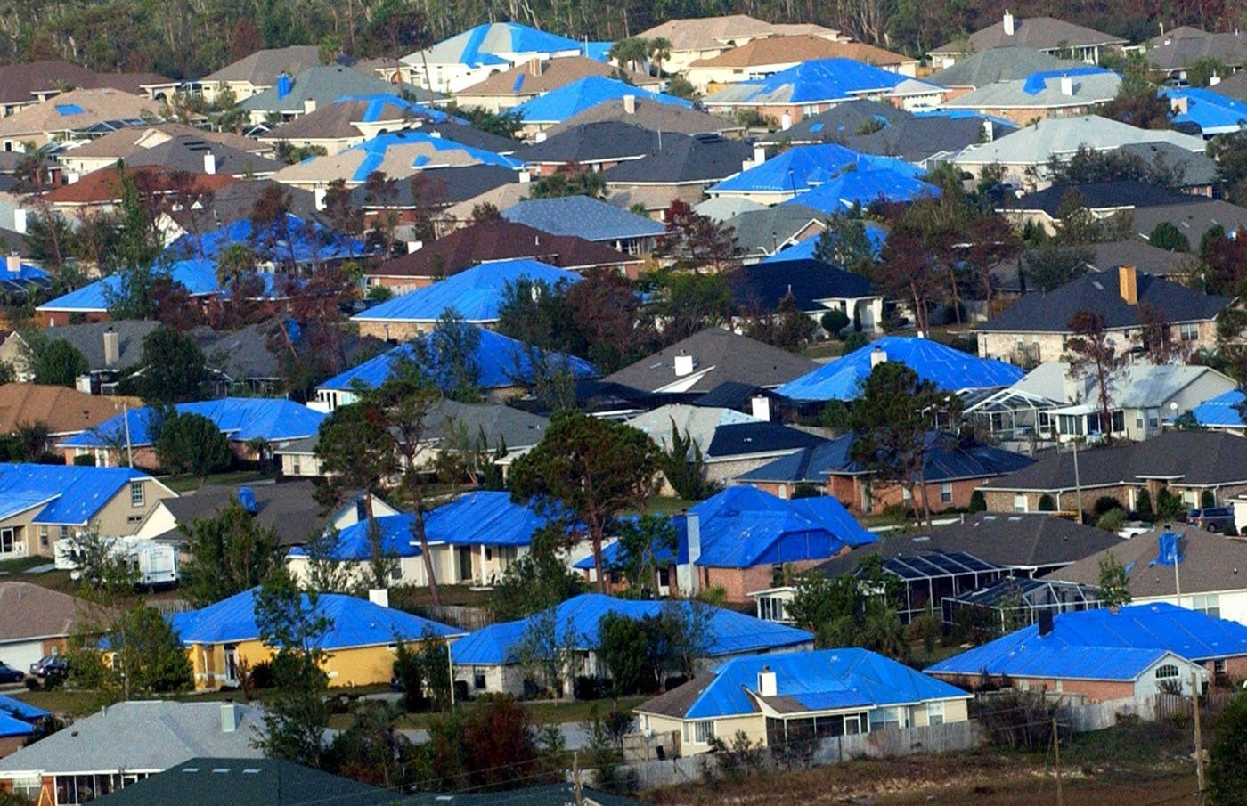 A Sea Of Blue Tarps After Hurricane Ivan Hurricane Ivan Australia City Photo