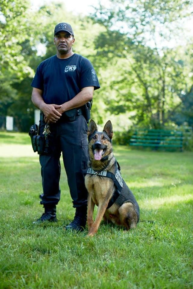 K9 Police Dog And Handler Military Working Dogs