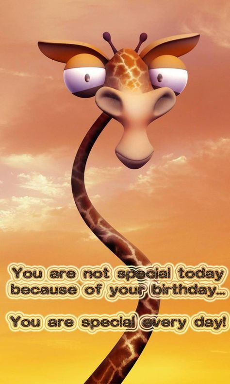 Happy Birthday Giraffe Happy Birthday Giraffe