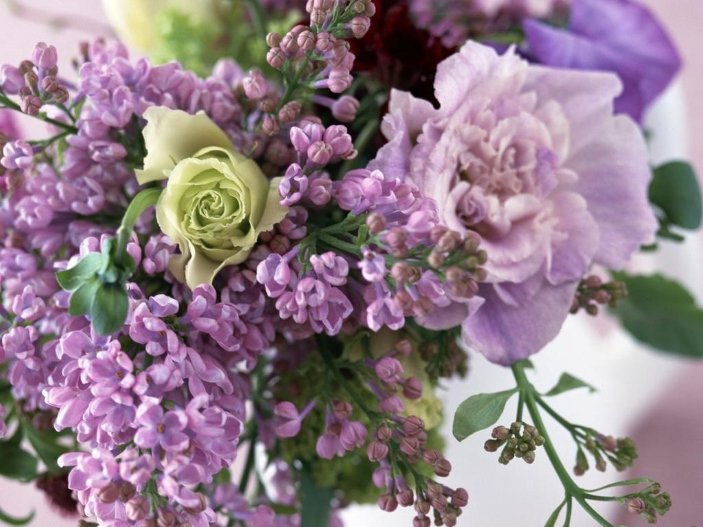 Buquê de flores roxa Wallpaper
