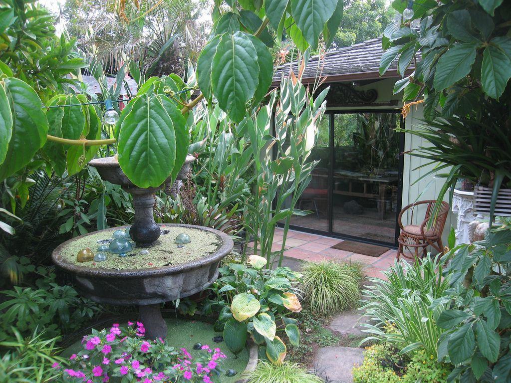tropical garden small