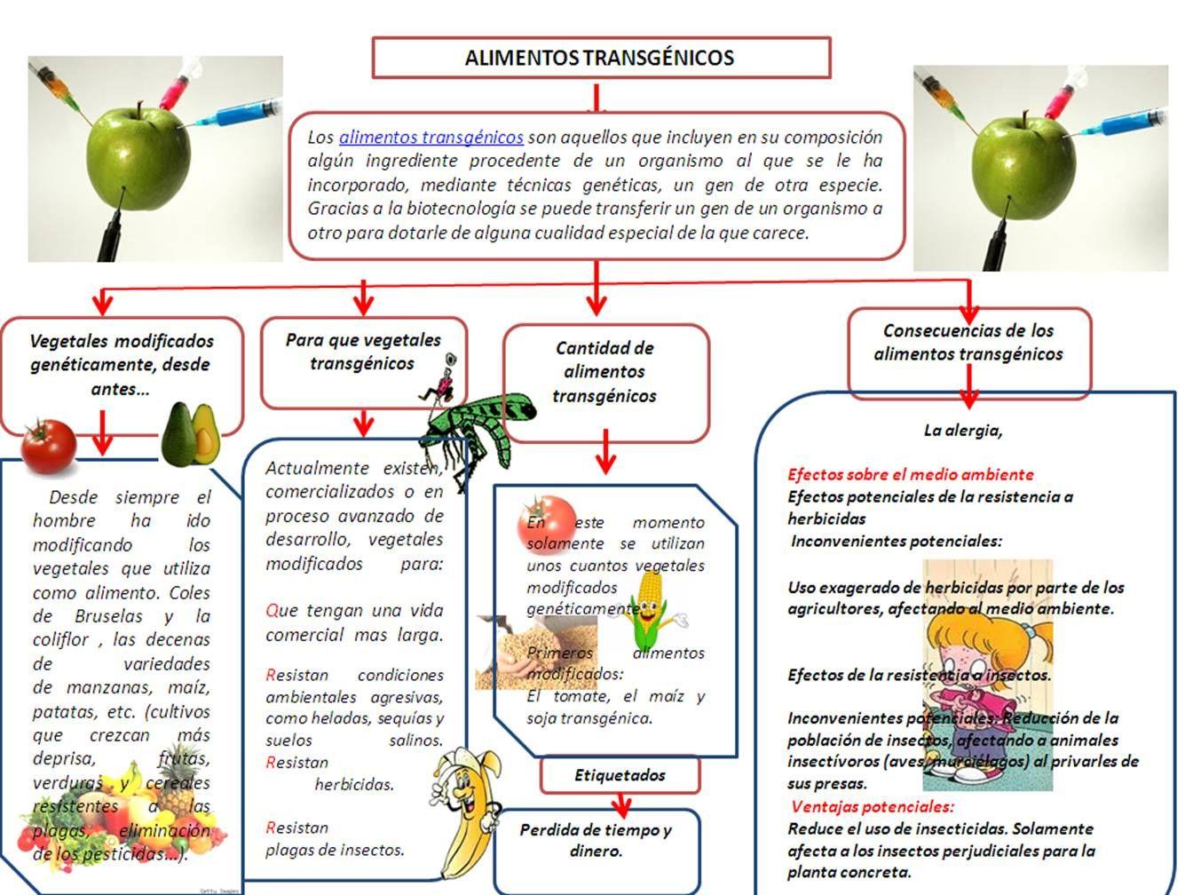 Pin En Alimento Transgenico