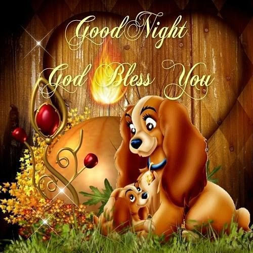 ❤️️️Good Night & God Bless❤️May you all have a restful nights sleep.