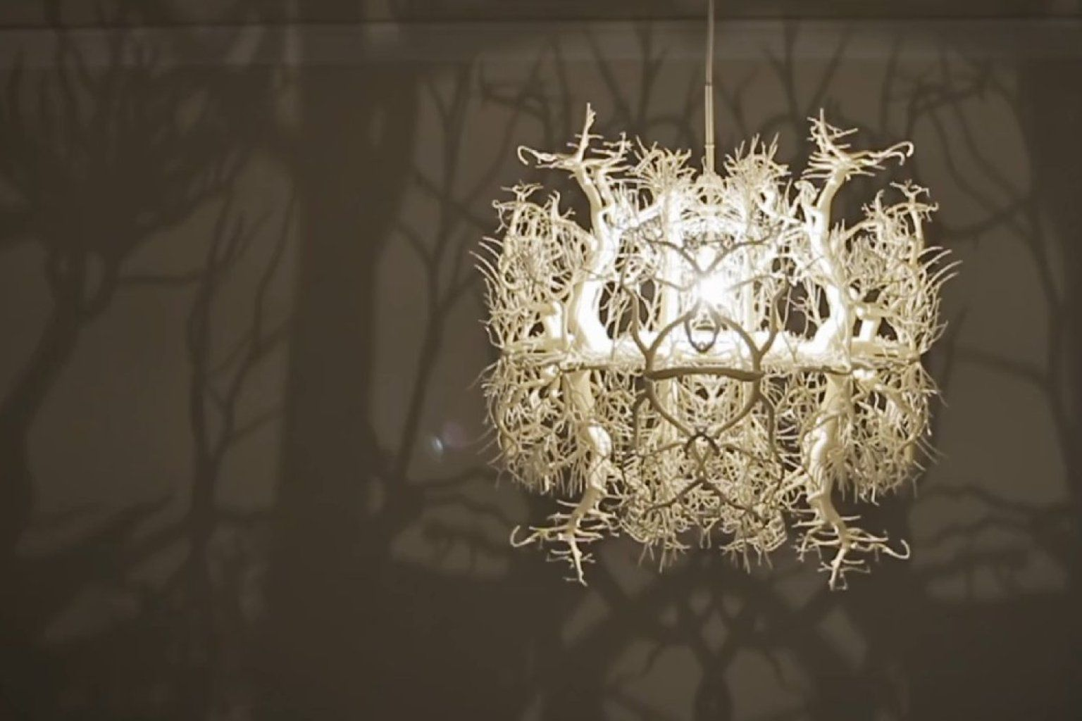 Whoa now this is how you create a focal point chandeliers lights forms in nature chandelier aloadofball Gallery