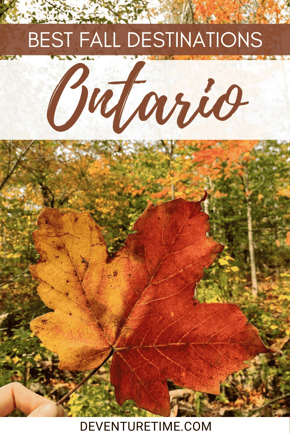 Breathtaking Places To Visit This Fall In Ontario Breathtaking Places Autumn Destinations Ontario Travel