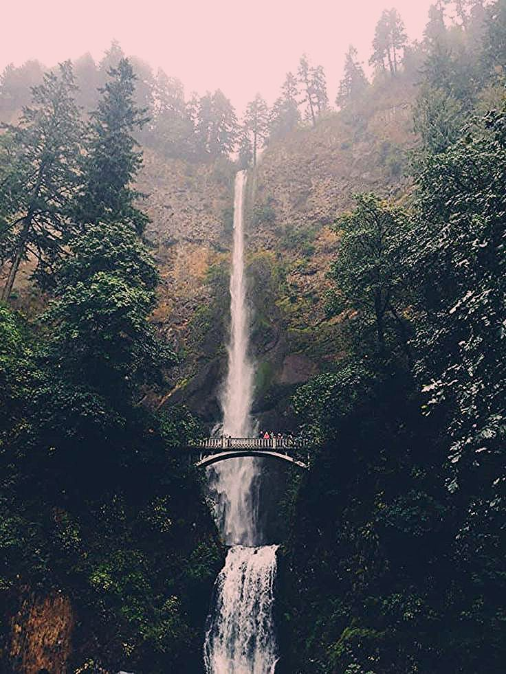 Photo of 101 Things to do in Portland, Oregon – a Local's Guide