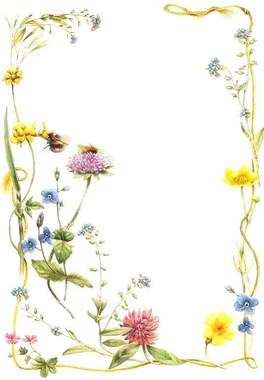 Summer Frame | darysiu | Pinterest | Frame, Flower frame and Paper