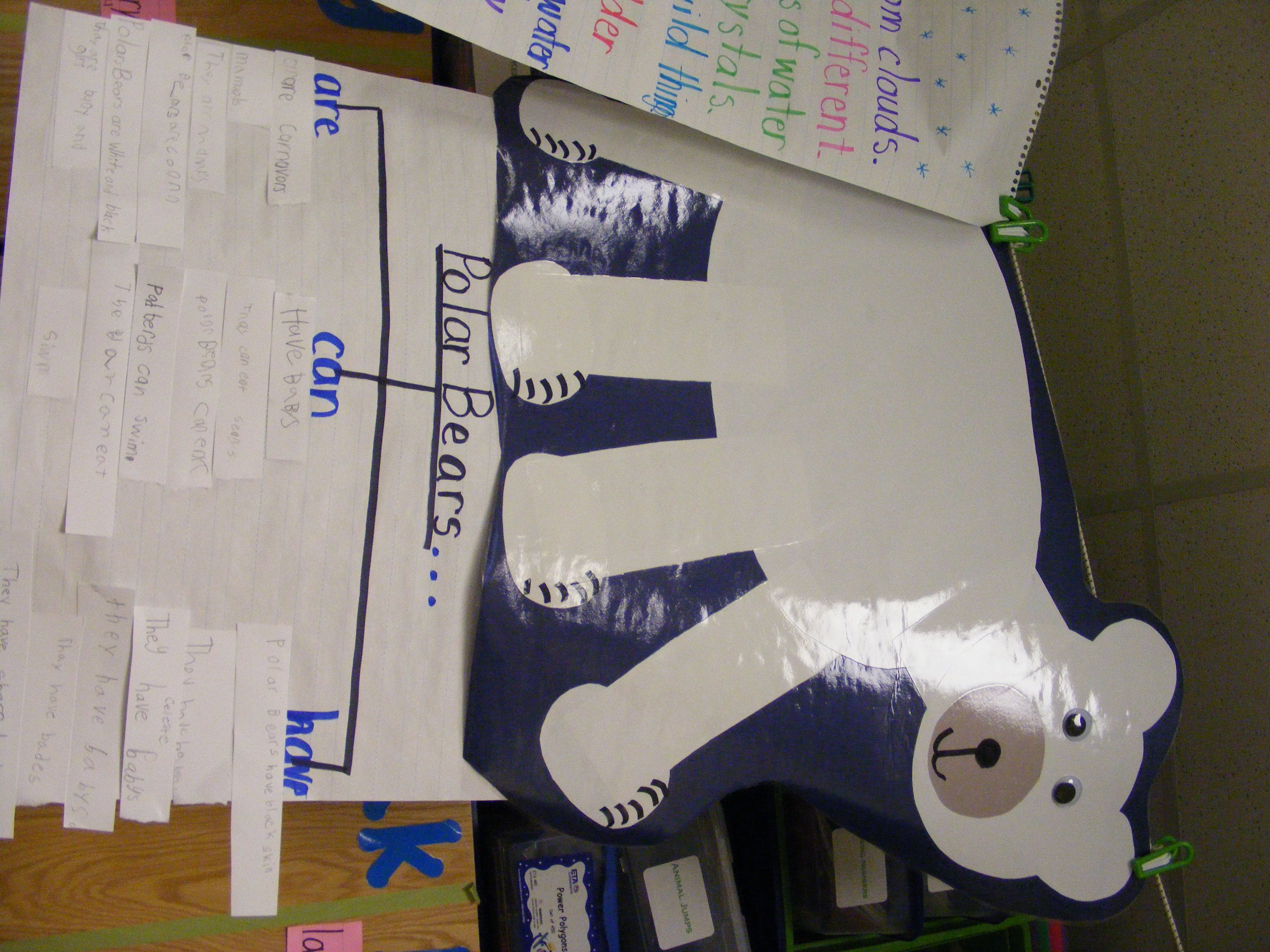 Polar bear anchor chart and tree graph my first grade classroom polar bear anchor chart and tree graph ccuart Images
