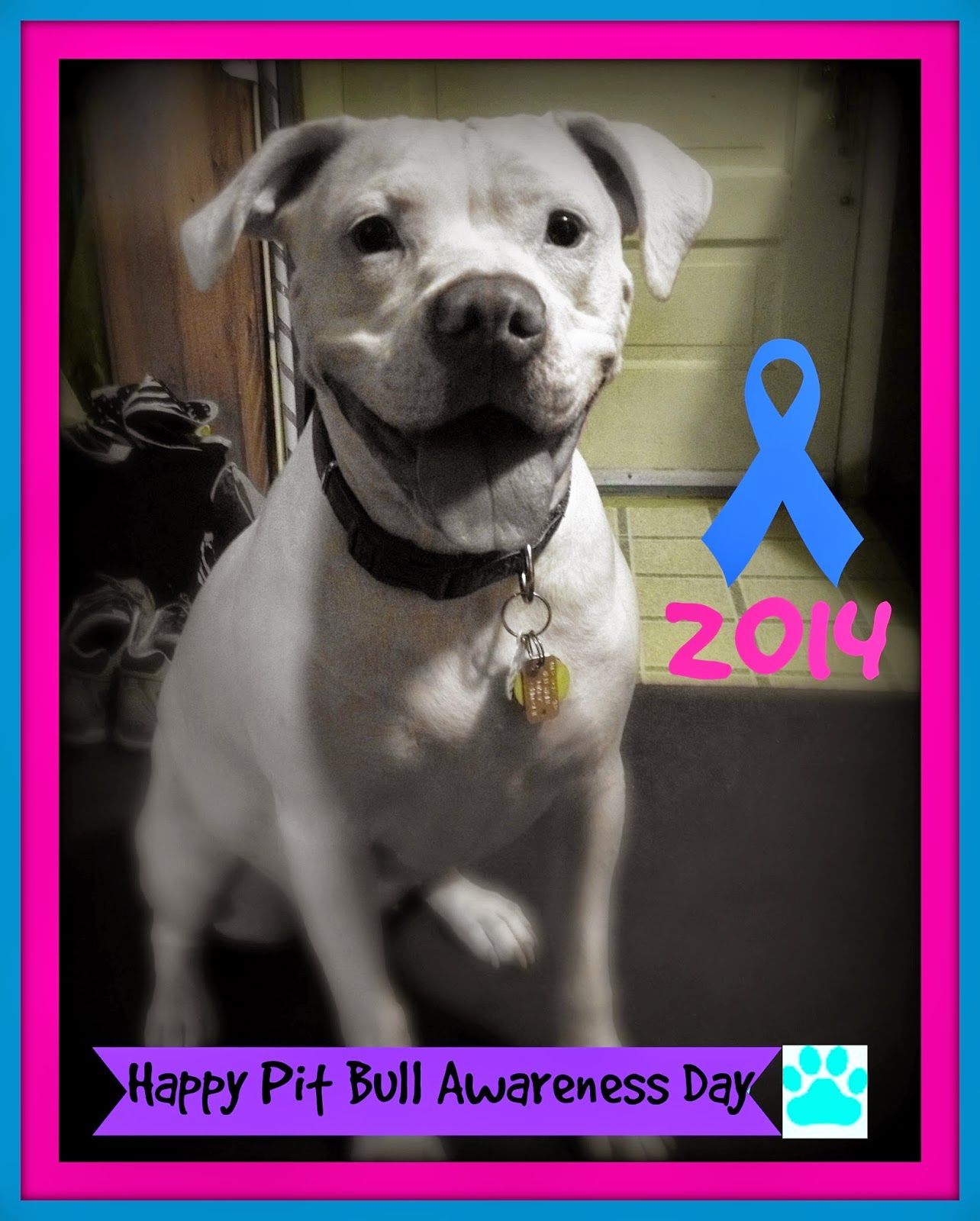 Pearl's Pibbles N Bits: Happy Pit Bull Awareness Day