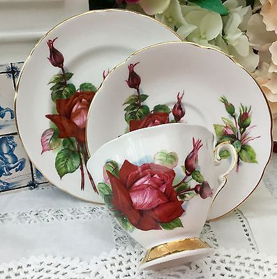 Paragon China Trio Cup Saucer Plate Set - Grand Gala - World Famous Roses Harry & Paragon China Trio Cup Saucer Plate Set - Grand Gala - World ...