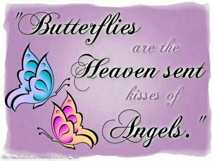 kisses of angels