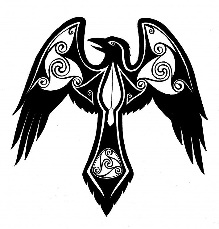 Line Drawing Raven : View thousands amazing images on hdimagelib celtic