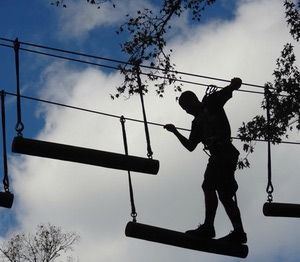 10 Fun Things To Do In Daytona Beach With Kids Touch The Treetops