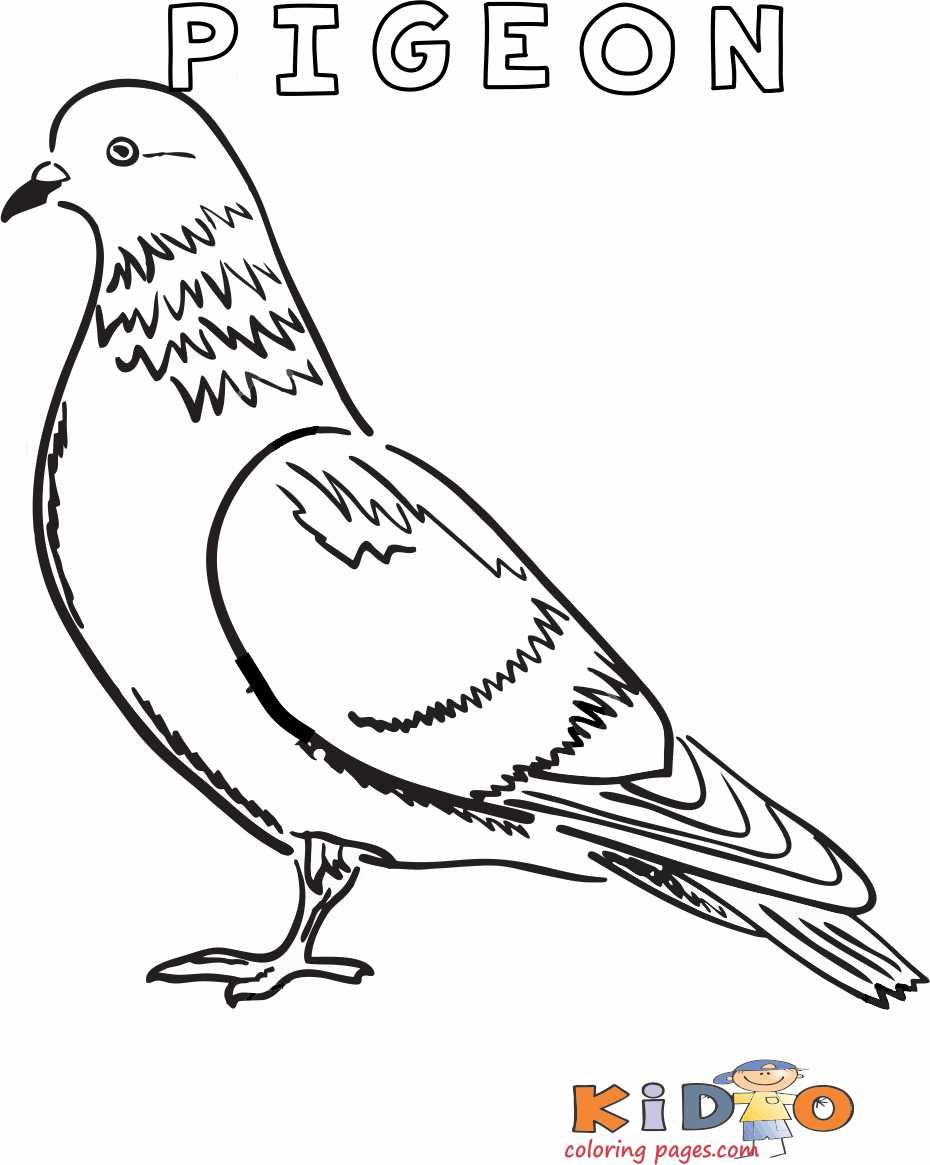Pigeon Colouring In Page Printable In 2020 Coloring Pages Printables Kids Coloring For Kids